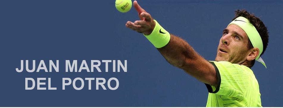 Juan Martin Del Potro Shoes