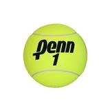 Penn 4