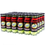 Penn Championship Extra Duty Tennis Ball Case - 3 Ball Can x 24