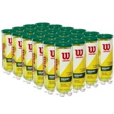 Wilson Championship Regular Duty Tennis Ball Case - 3 Ball Can x 24