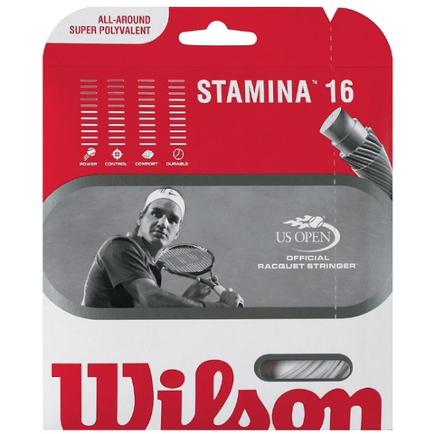 Wilson Stamina 16 Tennis String Set